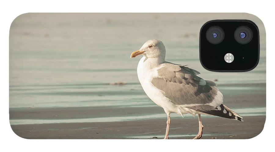 Art IPhone 12 Case featuring the photograph A Walk on the Beach by Lucid Mood