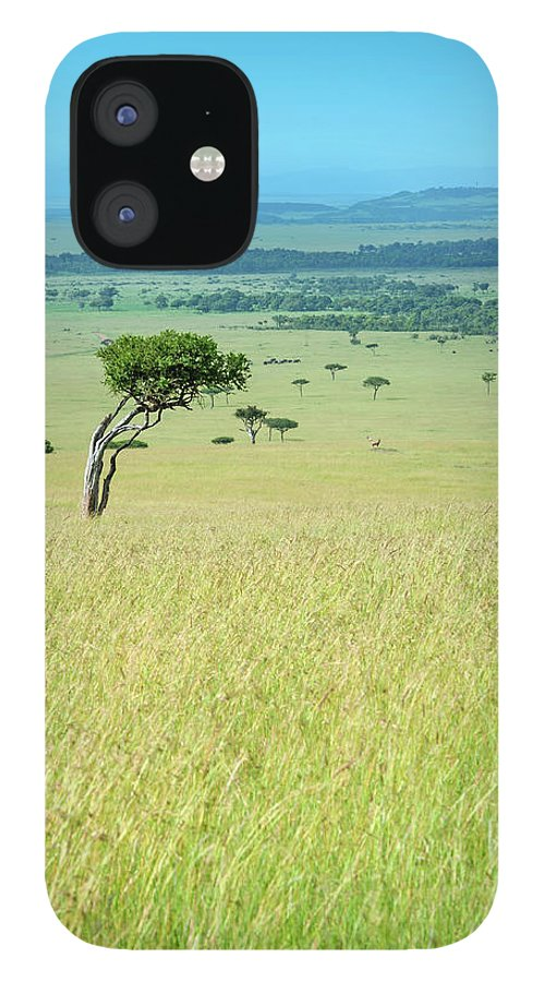 Scenics iPhone 12 Case featuring the photograph Acacia In The Green Plains Of Masai Mara by Guenterguni