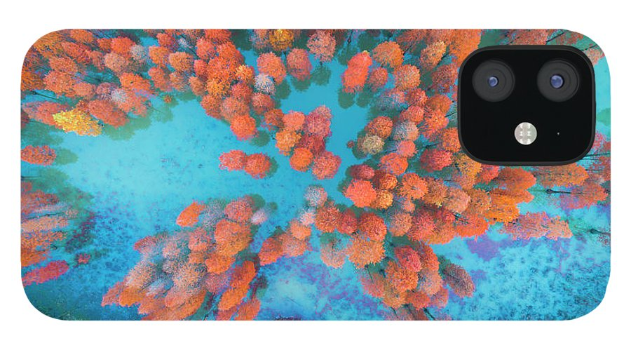 Tranquility IPhone 12 Case featuring the photograph Aerial Drone View With Fir Tree Fall by Yaorusheng