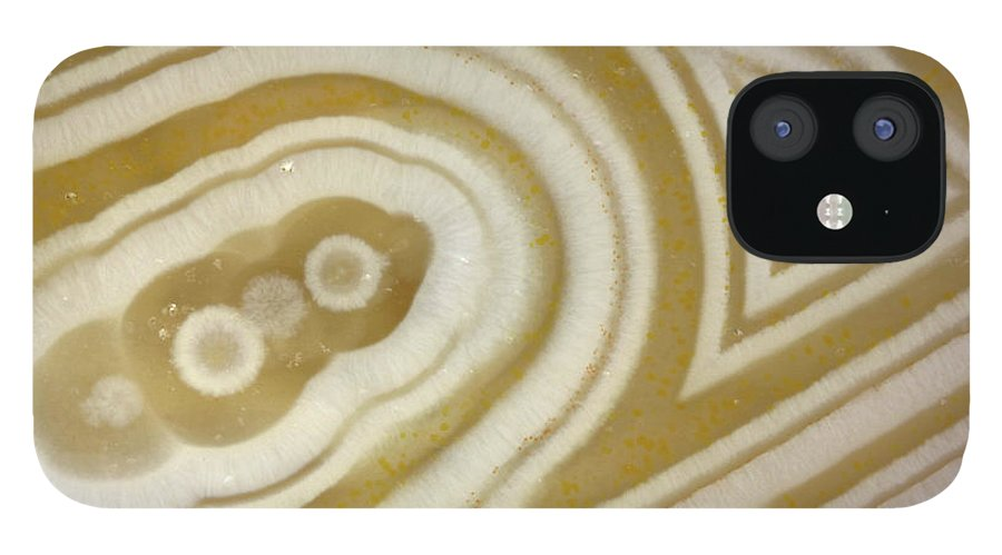 Mineral IPhone 12 Case featuring the photograph Agate by Matteo Chinellato - Chinellatophoto