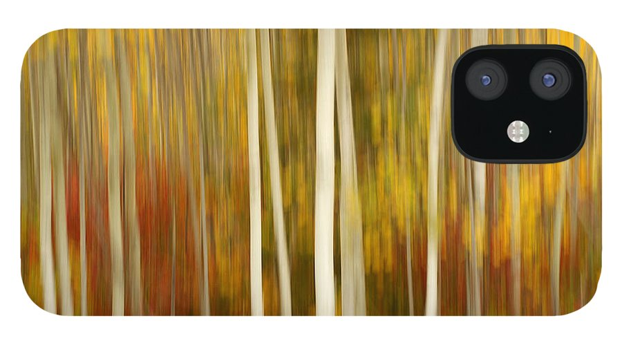 Autumn Color iPhone 12 Case featuring the photograph Autumn Chorus by Bill Morgenstern