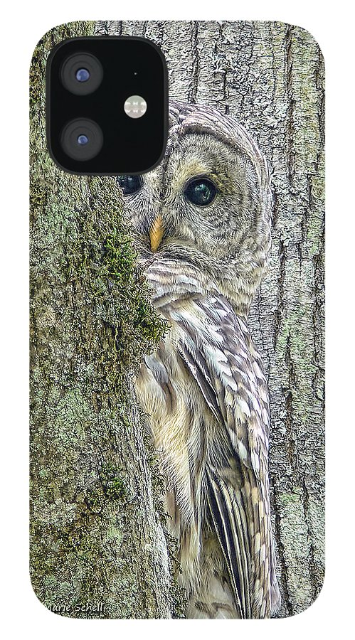 Owl IPhone 12 Case featuring the photograph Barred Owl Peek a Boo by Jennie Marie Schell