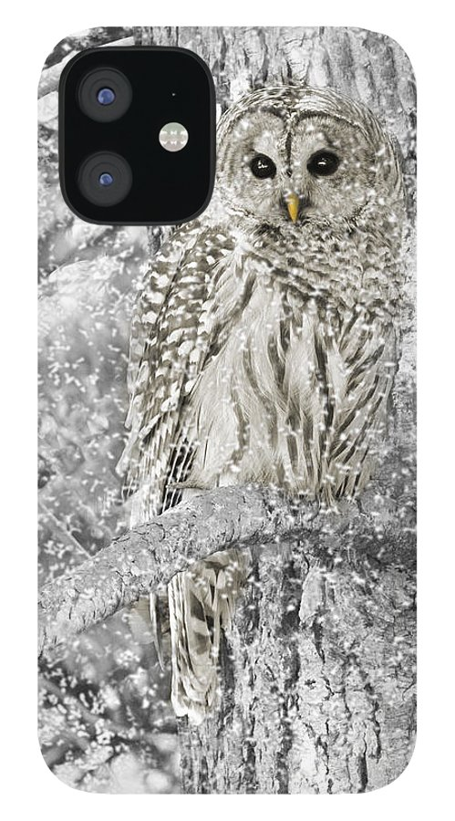 Owl IPhone 12 Case featuring the photograph Barred Owl Snowy Day in the Forest by Jennie Marie Schell