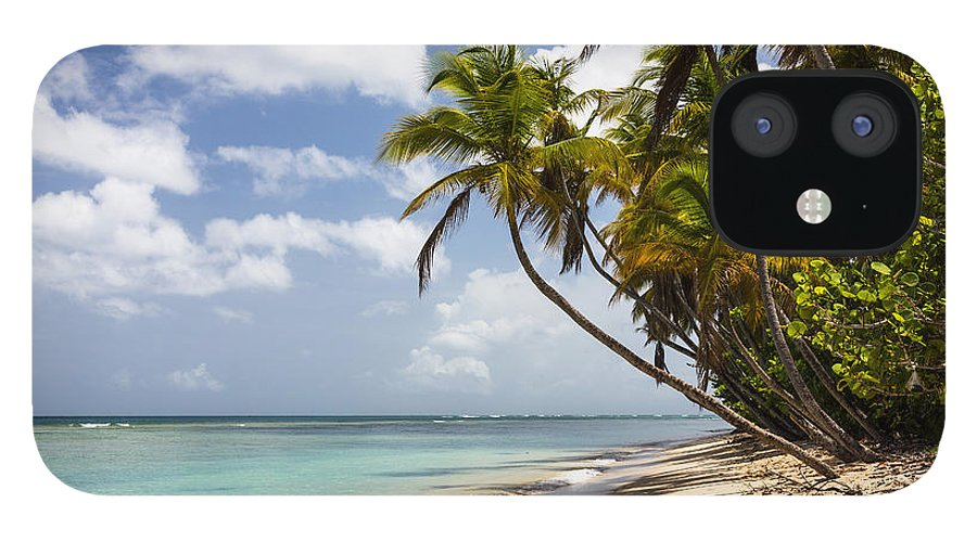Konrad Wothe iPhone 12 Case featuring the photograph Beach Pigeon Point Tobago West Indies by Konrad Wothe