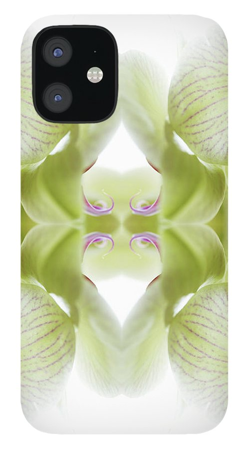 Tranquility IPhone 12 Case featuring the photograph Beautiful, Finely Textured Orchid by Silvia Otte