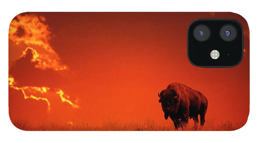 Scenics IPhone 12 Case featuring the photograph Bison At Sunset by Mark Newman