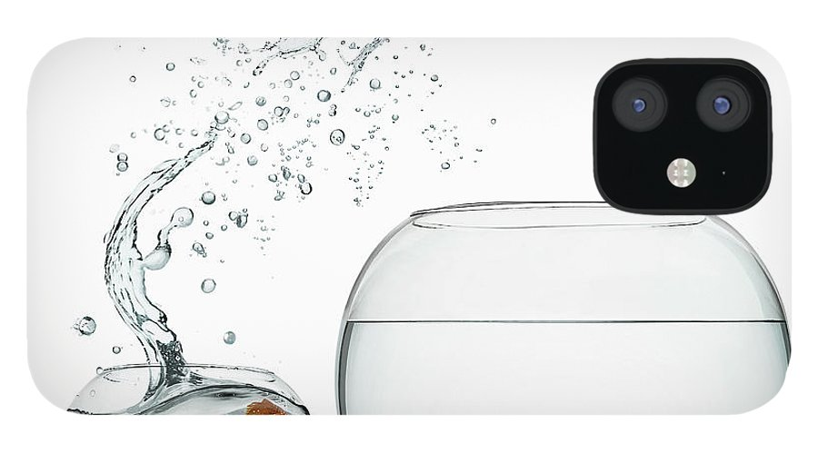 Pets IPhone 12 Case featuring the photograph Black Goldfish by Gandee Vasan