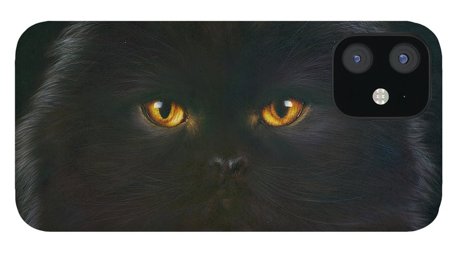 Andrew Farley iPhone 12 Case featuring the photograph Black Persian by MGL Meiklejohn Graphics Licensing