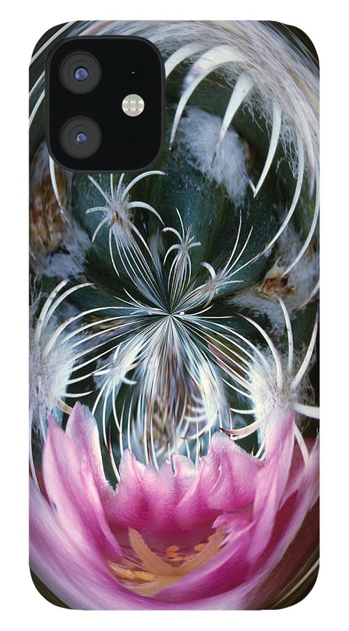 Abstract IPhone 12 Case featuring the photograph Cactus Flower Abstract by Keith Gondron