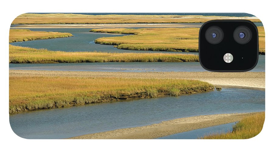 Grass IPhone 12 Case featuring the photograph Cape Cod Wetlands by Frankvandenbergh