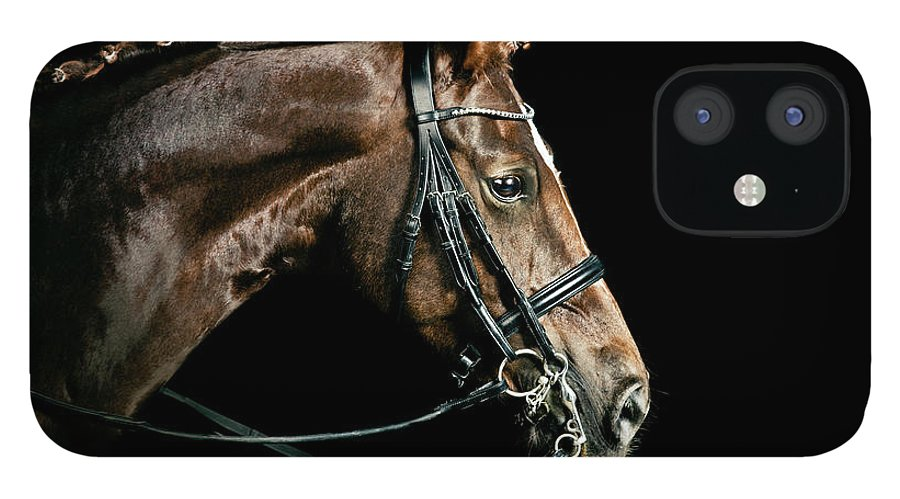 Horse IPhone 12 Case featuring the photograph Chestnut Dressage Horse Groomed For A by Anja Hild