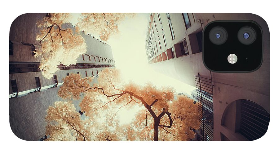Tranquility IPhone 12 Case featuring the photograph City In Harmony With Nature by D3sign
