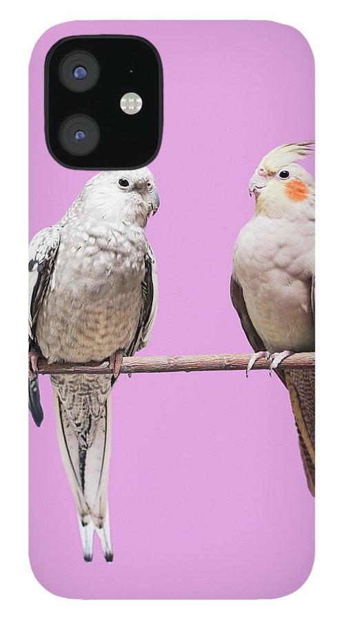 Pets IPhone 12 Case featuring the photograph Cockatiel Parrots by Larry Washburn