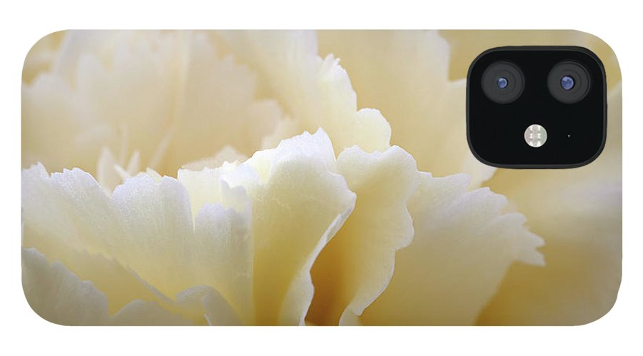 Netherlands IPhone 12 Case featuring the photograph Cream Coloured Carnation, Close-up by Roel Meijer