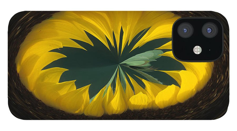 Daisy IPhone 12 Case featuring the photograph Daisy Abstract by Keith Gondron