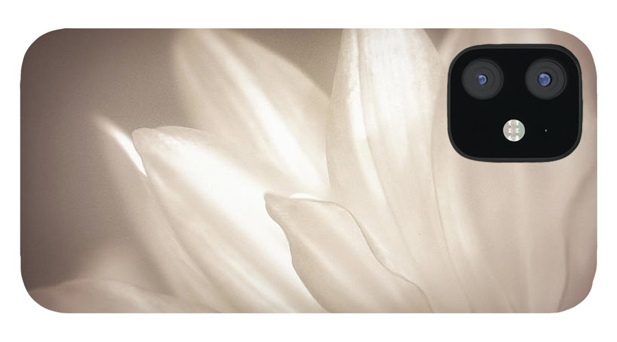 Bloom IPhone 12 Case featuring the photograph Delicate by Scott Norris