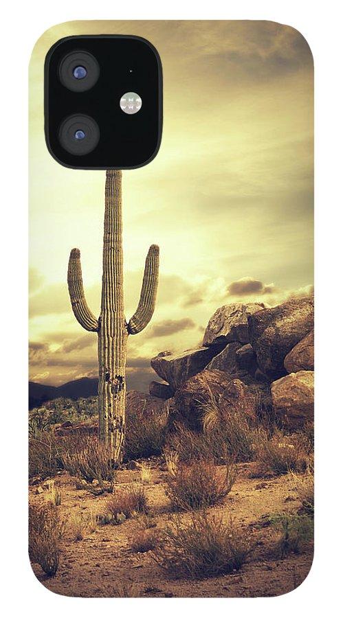 Saguaro Cactus IPhone 12 Case featuring the photograph Desert Cactus - Classic Southwest by Hillaryfox