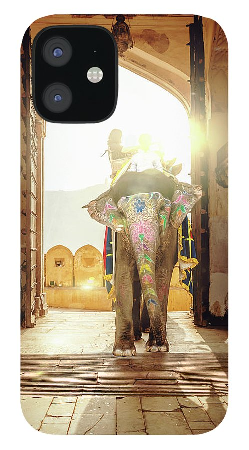 Working Animal IPhone 12 Case featuring the photograph Elephant At Amber Palace Jaipur,india by Mlenny
