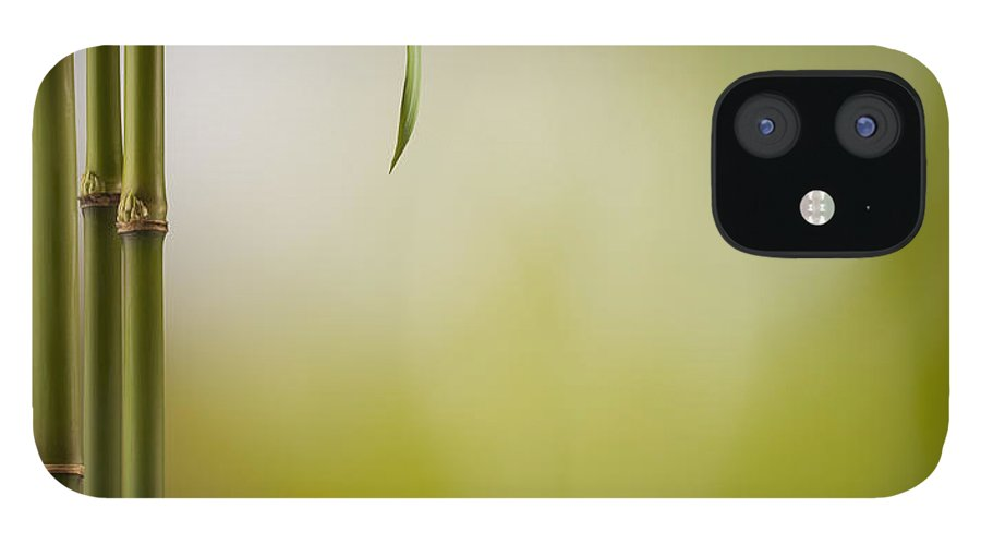 Bamboo IPhone 12 Case featuring the photograph Feng Shui Bliss by Pixhook