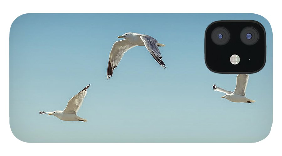 Art IPhone 12 Case featuring the photograph Flying Free by Lucid Mood