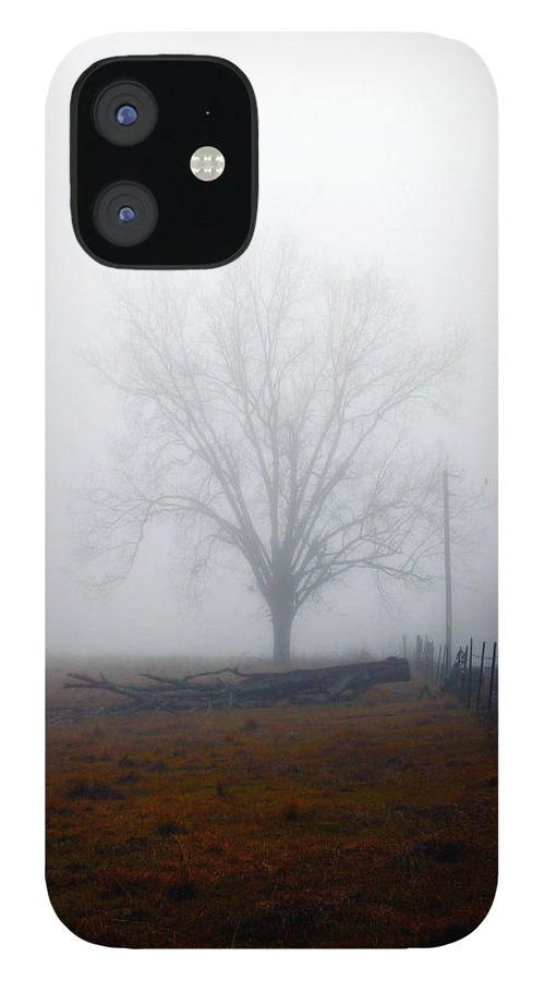 Trees IPhone 12 Case featuring the photograph Foggy Sunday by Leon Hollins III