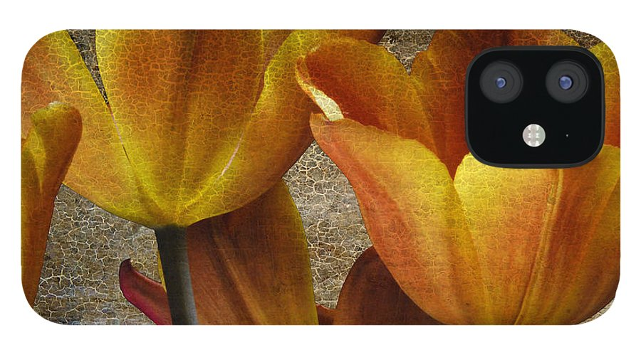 Four IPhone 12 Case featuring the photograph Four Tulips by Keith Gondron
