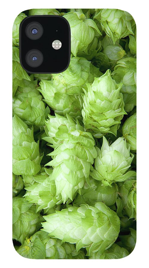 Alcohol IPhone 12 Case featuring the photograph Fresh Hops by Licreate