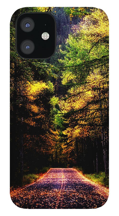 Glacier Park IPhone 12 Case featuring the photograph Glacier Fall Road by Susan Kinney