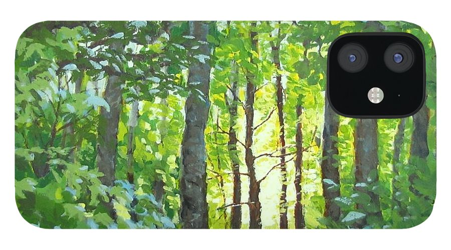 Landscape IPhone 12 Case featuring the painting Glow by Karen Ilari