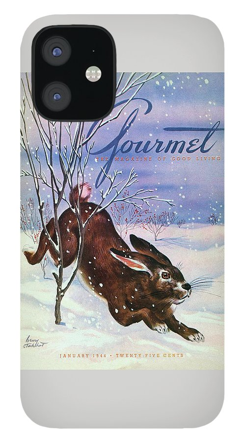 Gourmet Cover Of A Rabbit On Snow IPhone 12 Case