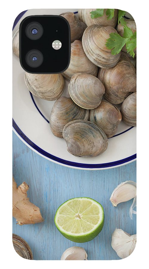 Newtown IPhone 12 Case featuring the photograph Green Curry, Coconut, Garlic & Ginger by Yelena Strokin