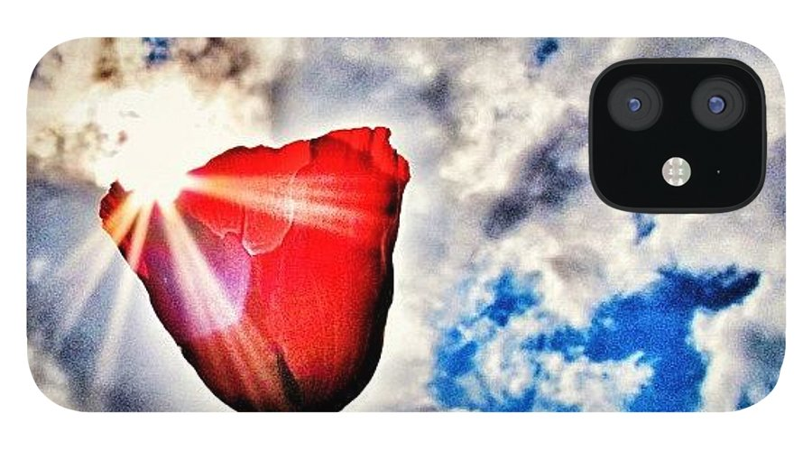 Nature IPhone 12 Case featuring the photograph High As A Sky by Marianna Mills
