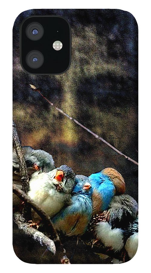 His Eye Is On The Sparrow IPhone 12 Case featuring the digital art His Eye Is On The Sparrow by Seth Weaver