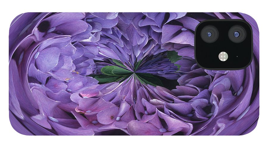 Abstract IPhone 12 Case featuring the photograph Hydrangea Abstract by Keith Gondron