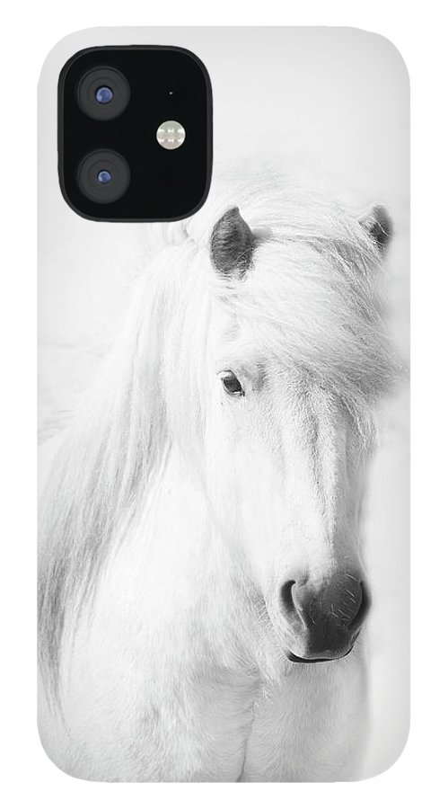 White Background IPhone 12 Case featuring the photograph Icelandic Pony In White by Grant Faint