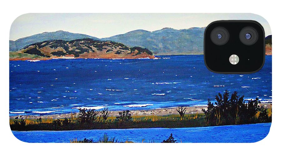 Islands IPhone 12 Case featuring the painting Iona formerly Rams Islands by Barbara Griffin