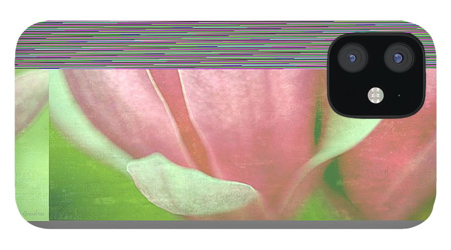 Japanese IPhone 12 Case featuring the photograph Japanese Magnolias by Keith Gondron