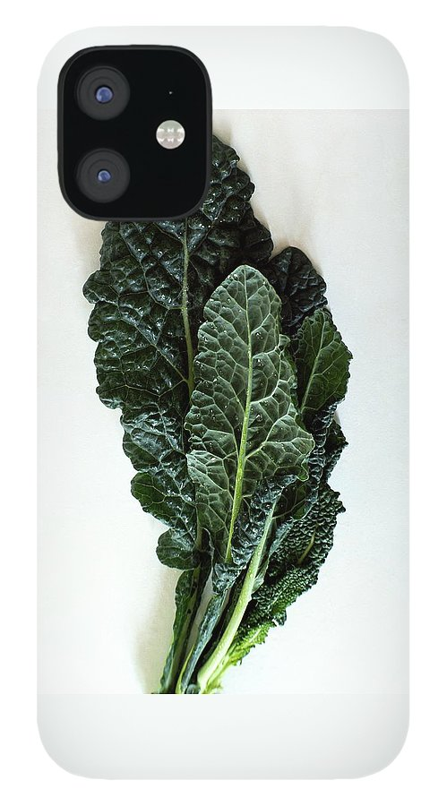 Lacinato Kale IPhone 12 Case