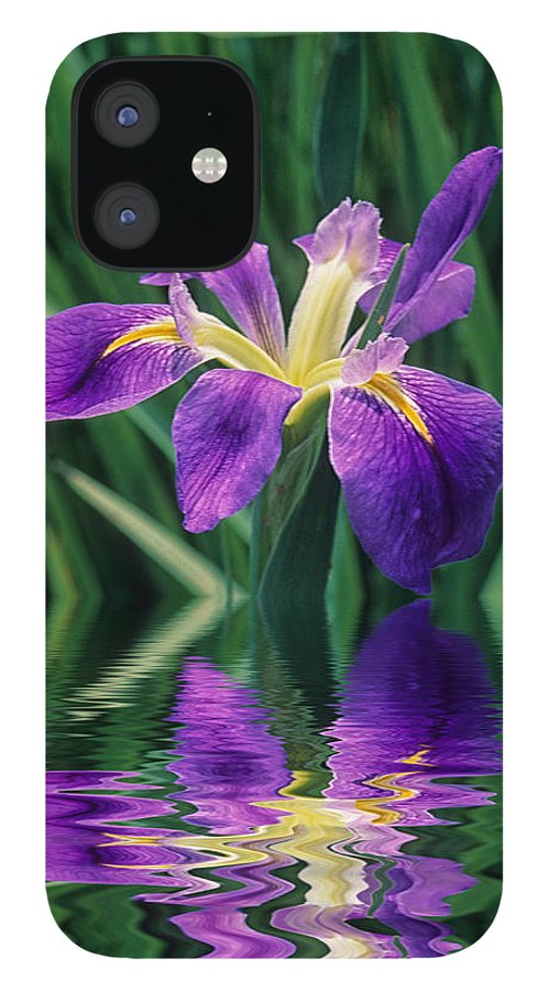 A Louisiana Iris Stands In Water IPhone 12 Case featuring the photograph Louisiana Iris by Keith Gondron