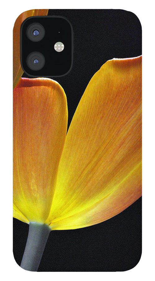 Flower IPhone 12 Case featuring the photograph Luminescent Tulips by Keith Gondron