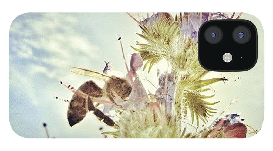 Summer IPhone 12 Case featuring the photograph #mgmarts #flower #spring #summer #bee by Marianna Mills