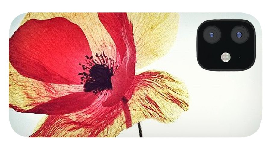 Europe IPhone 12 Case featuring the photograph #mgmarts #poppy #nature #red #hungary by Marianna Mills