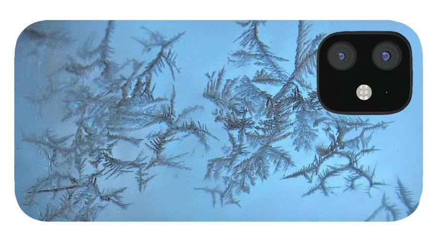 Frost IPhone 12 Case featuring the photograph Miniature Beauty by Candice Trimble