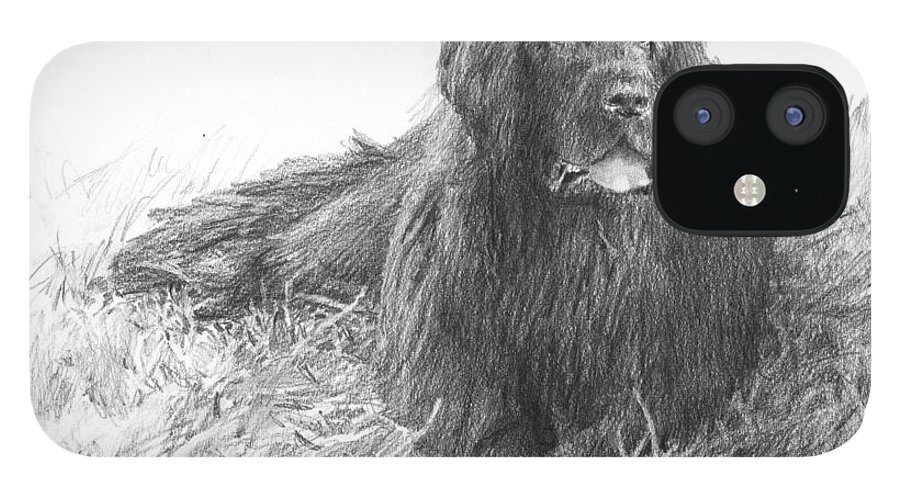 <a Href=http://miketheuer.com Target =_blank>www.miketheuer.com</a> Newfoundland Dog Pencil Portrait IPhone 12 Case featuring the drawing Newfoundland Dog Pencil Portrait by Mike Theuer
