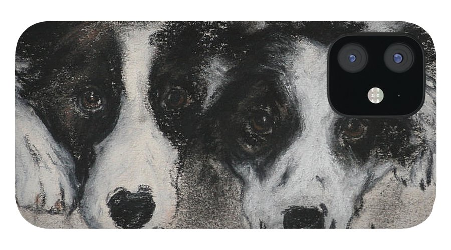 Border Collie IPhone 12 Case featuring the drawing On The Border by Cori Solomon