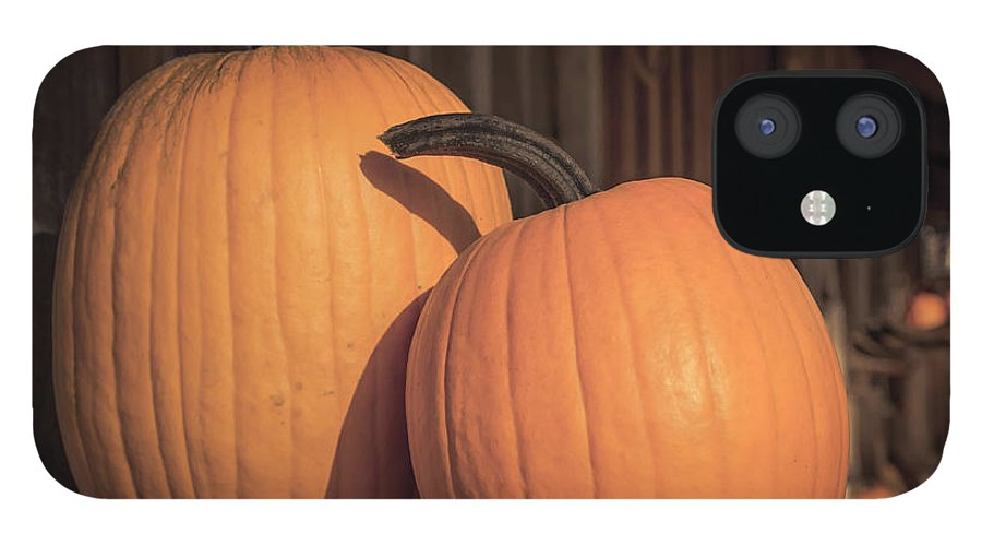 Art IPhone 12 Case featuring the photograph Orange Pumpkins by Lucid Mood
