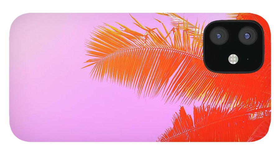 Orange Color IPhone 12 Case featuring the photograph Palm Tree On Sky Background. Palm Leaf by Slavadubrovin