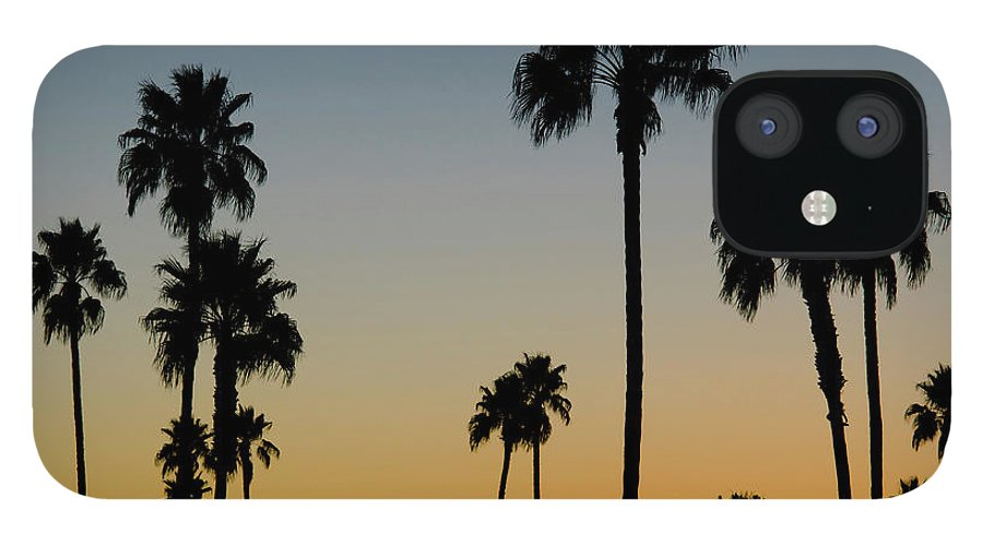 Scenics IPhone 12 Case featuring the photograph Palm Trees At Sunset by Chapin31
