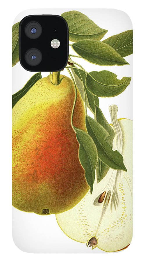 Art IPhone 12 Case featuring the digital art Pear by Ivan-96