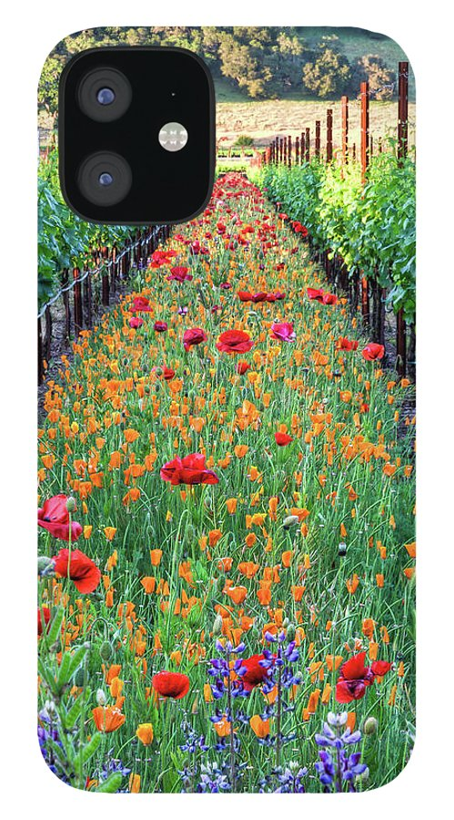 Tranquility IPhone 12 Case featuring the photograph Poppy Lined Vineyard by Rmb Images / Photography By Robert Bowman
